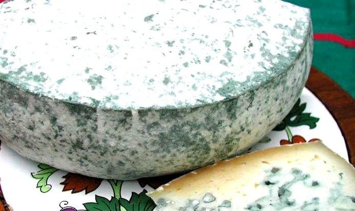 Что приготовить из сыра с плесенью