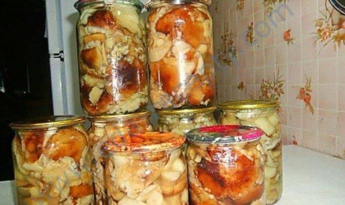 Грибы на зиму рецепты с пошагово