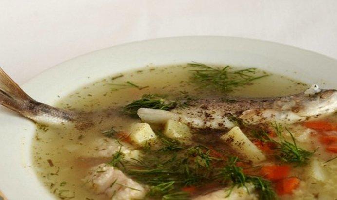 Рыбный суп из речной рыбы рецепт